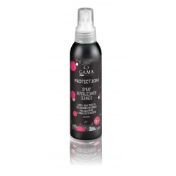 Spray thermo protecteur et lisseur PROTECT ION GAMA 120 ml